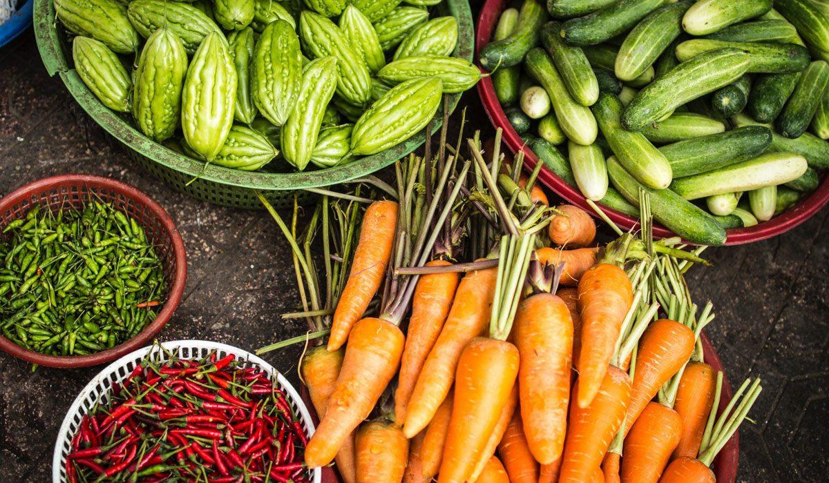 Beslenme ve Diyet Danışmanlığı Neden Önemlidir ?