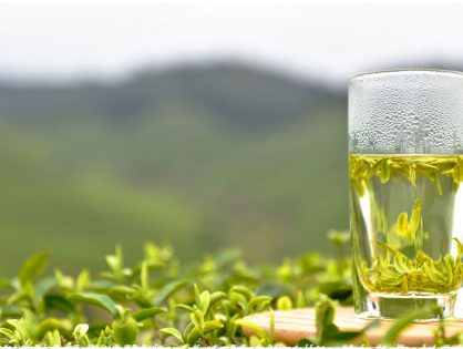 Yeşil Çay Kilo Kaybına Yardımcı Olur Mu?